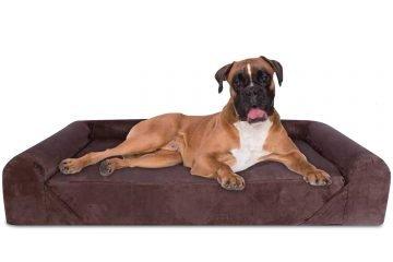 Memory Foam Sofa Dog Bed