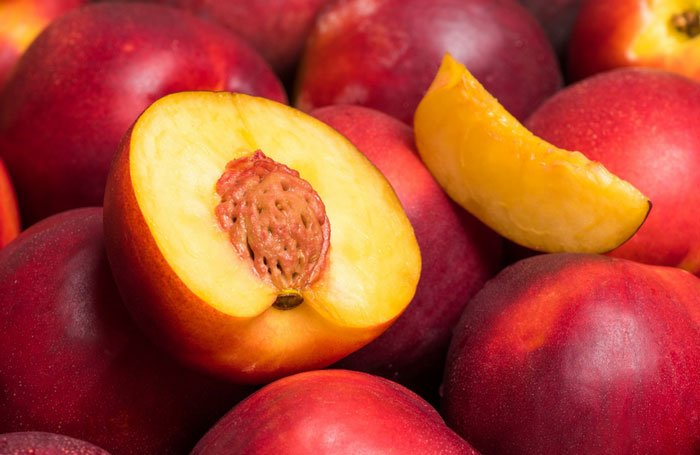 nectarines for dogs