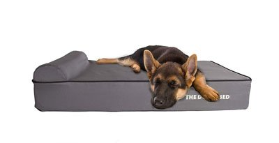 The 8 Best Dog Beds For German Shepherds Buying Guide 2019
