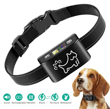 The Dog Training Collar by MiToo