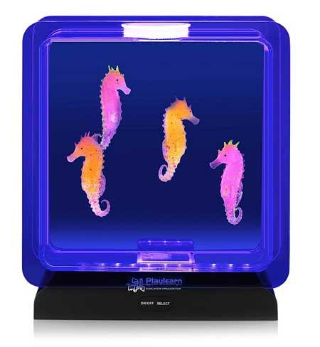 Fake Sea Horse Aquarium for cat