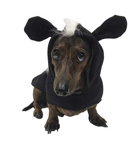 Midlee Skunk Costume for Dachshund