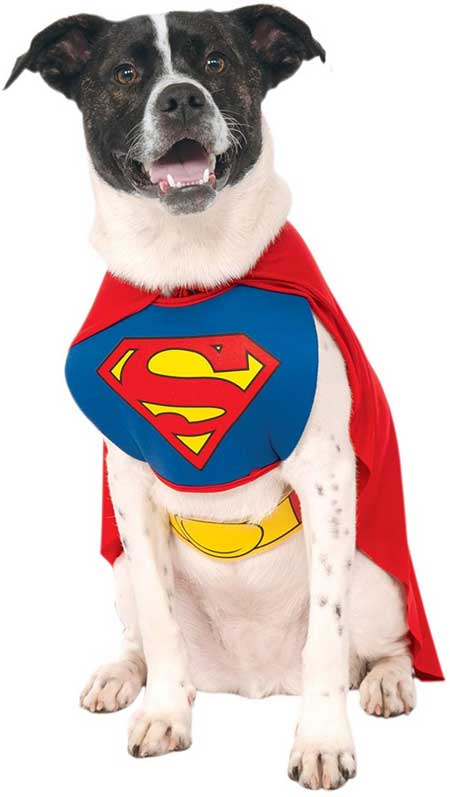 Rubie's DC Comics Superman Costume