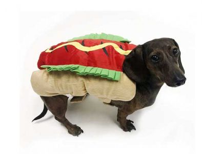 hot dog costume for dachshunds