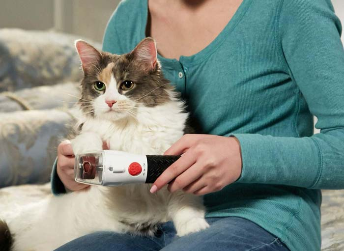 Paw Perfect Nail Trimmer and cat