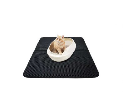cat on double layer litter mat and litter box