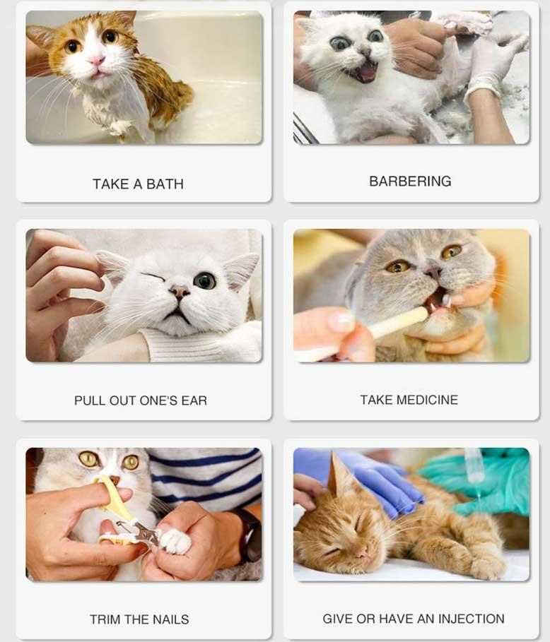 Benefits of cat boots